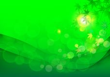 Leaves maple summer backgrounds. Adstract green maple summer backgrounds s Stock Image