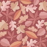 Leaves marsala pattern Royalty Free Stock Photography