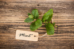 Mint with label Royalty Free Stock Image