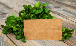 Leaves of mint with label Royalty Free Stock Photography