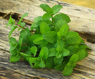 Leaves of mint with label. Leaves of mint on wood.Fresh .good for health Stock Photo
