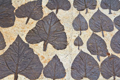 Leaves on mortar Stock Photography
