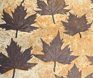 Leaves on mortar Stock Photo