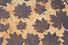 Leaves on mortar Royalty Free Stock Photography