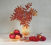 Leaves of a mountain ash are in a vase. Stock Image