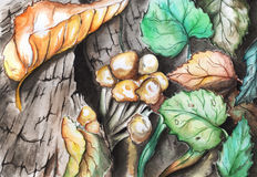 Leaves and mushrooms on the tree stump Stock Images