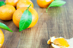 Leaves and oranges Royalty Free Stock Photo