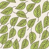 Leaves organic icon. Vecor illustration design graphic Stock Images