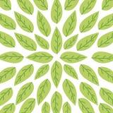 Leaves organic icon Stock Image