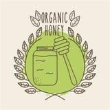 Leaves organic icon Royalty Free Stock Photo