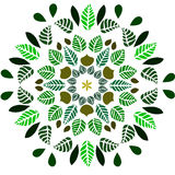 Leaves ornament Royalty Free Stock Photo