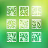 Leaves in outline style for ecology and botany design Stock Photos