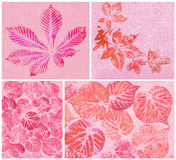Leaves, painted on canvas Stock Images