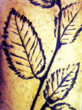 Leaves painted on clay Royalty Free Stock Photo