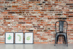 Leaves paintings and black chair. Loft interior with leaves paintings, black chair royalty free stock image