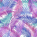Leaves of palm tree. Seamless pattern. Palm leaf in violet on white background. Tropical trees leaves. Leaves of palm tree. Seamless pattern. Palm leaf in Royalty Free Stock Images