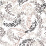 Leaves of palm tree seamless pattern. Vector background Royalty Free Stock Photography