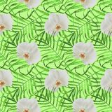 Leaves palm trees with orchid seamless pattern green stock illustration