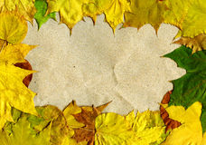 Leaves and paper Stock Photos