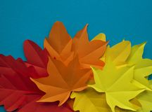 Leaves of paper fall red, orange, yellow leaf fall stock images