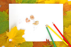 Leaves, paper and pencils Royalty Free Stock Photo
