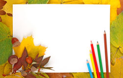 Leaves, paper and pencils Stock Photos
