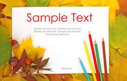 Leaves, paper and pencils & text Royalty Free Stock Photography