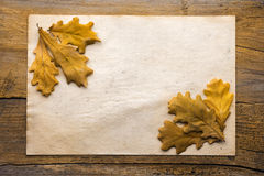 Leaves and paper on wooden background Royalty Free Stock Photography