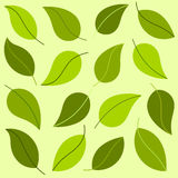 Leaves pattern Royalty Free Stock Photography