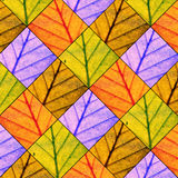 Leaves pattern. The autumn leaves colourful pattern Royalty Free Stock Photos