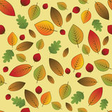 Leaves pattern. Autumn leaves pattern on bright yellow background Stock Photo
