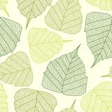 Leaves pattern Royalty Free Stock Images