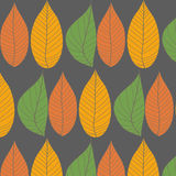 Leaves Patterns. Royalty Free Stock Image
