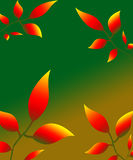 Leaves petals illustration autumn nature red yellow. 2017 Royalty Free Stock Photo