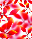 Leaves petals illustration autumn nature red yellow Stock Images
