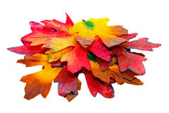 Leaves pile. Big pile of autumn leaves with clipping path stock photos
