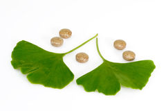 Leaves and pills. Ginkgo biloba leaf with pills on bright background Royalty Free Stock Photography