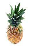 Leaves on pineapple Stock Photo