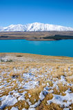 Leaves or plants on Mountain white snow in winter, Paradise places in New Zealand. Lake Tekapo is a lakeside resort village in the Mackenzie Country in the South Stock Images