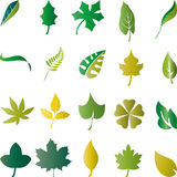 Leaves, Plants, Organic, Eco. Leaves and plants, organic and eco logos Stock Photos