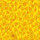 Leaves of Plants Pictogram, Seamless. Seamless Leaves Contour Silhouettes Dogrose, Oak Iberian Oak, Maple, Liquidambar, Hawthorn, Poplar Silver, Hazel, Elm Royalty Free Stock Photo