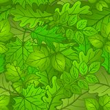 Leaves of plants, seamless, summer Royalty Free Stock Photo