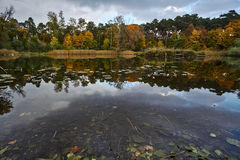 Leaves and pond in the autumn Stock Photography