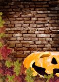 leaves  pumpkin on wall Brick brown background Royalty Free Stock Images