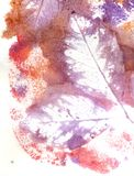 Leaves in Purple. Grunge purple watercolor texture with leaves as background Stock Image