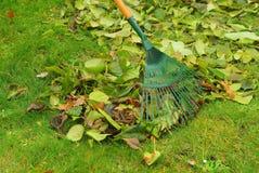 Leaves rake Royalty Free Stock Photos