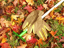 Leaves, Rakes And Gardening Gloves Royalty Free Stock Photo