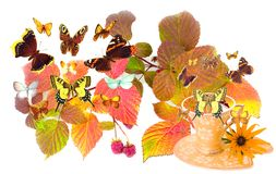 Leaves of raspberry and cup with butterflies. Autumn leaves of raspberry and cup beautiful ceramic with butterflies on white background Stock Photos