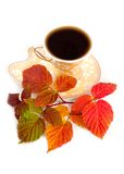 Leaves of raspberry and cup from coffee Royalty Free Stock Photo