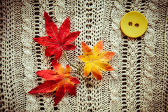 Leaves red autumn on a grey knitted background. Leaves red grey knitted background button yellow Royalty Free Stock Photos